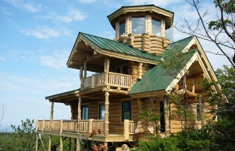 Rustic Ozark Cabin 6